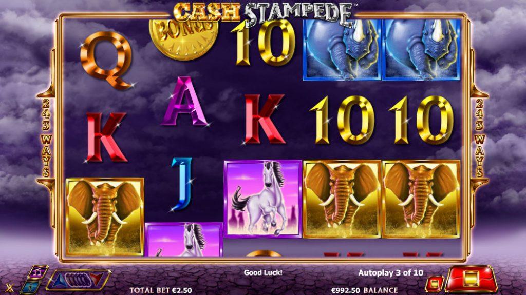 Cash Stampede Casino Game