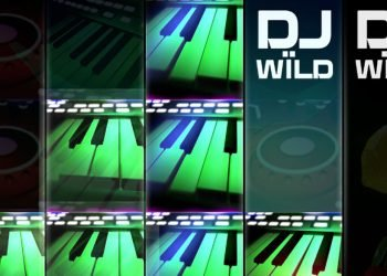 DJ Wild Casino Game
