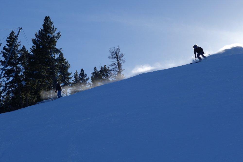 Betta på alpin skidåkning
