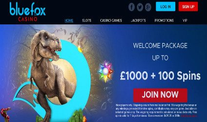 Bluefox homepage