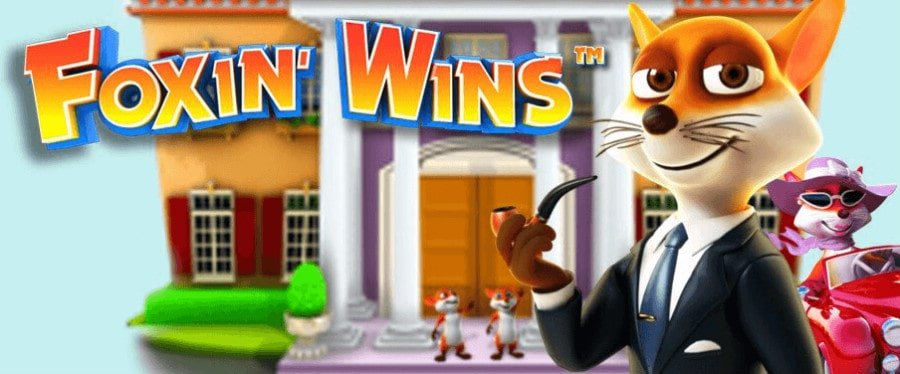Foxin-Wins-body-min