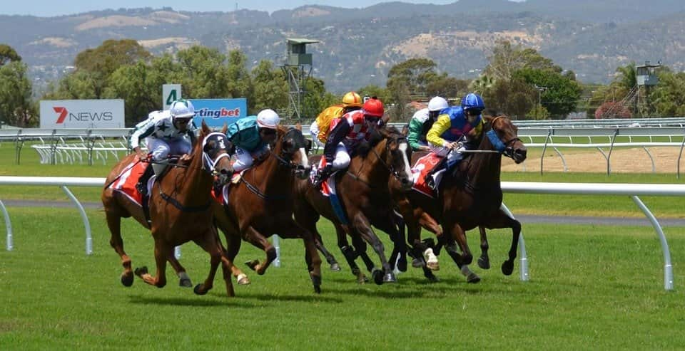 """Horseracing industry safe with EU's """"National Listed Status"""""""