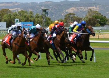 "Horseracing industry safe with EU's ""National Listed Status�"