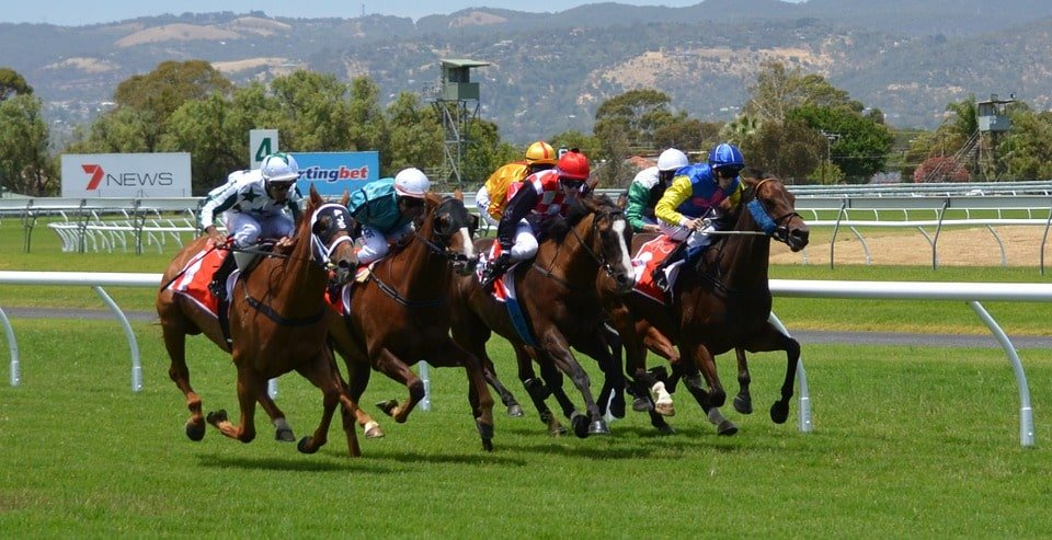 "Horseracing industry safe with EU's ""National Listed Status"""