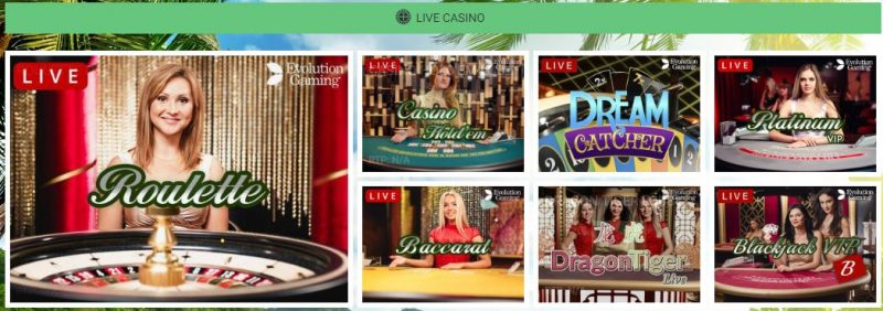 Mango Casino live kasino