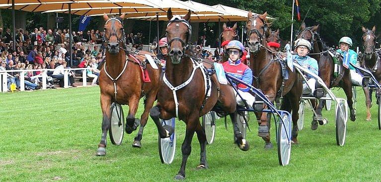 Pferdewetten Trabrennen