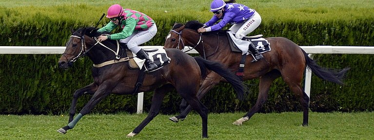 Pferdewetten Rennen Deutschland