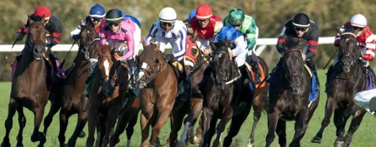 Woodbine Entertainment Confirms Queen's Plate to Be Moved to Late August 2021